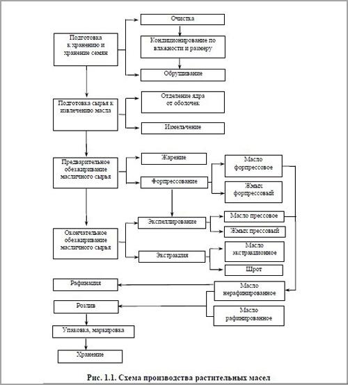 технологическая схема рафинации масла подсолнечного