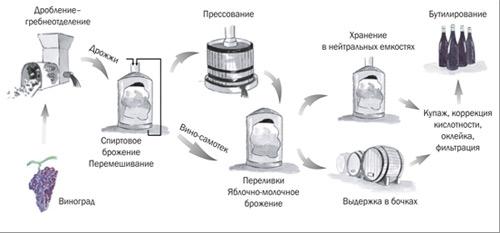 Схемы производства вин