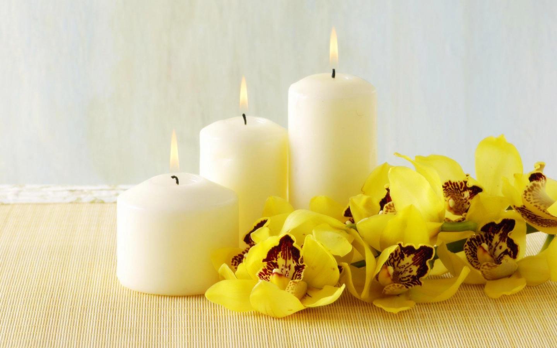 цветы свечи  № 1504354 без смс